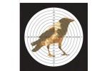 Мишень для пневматики Ворона 140*140 картон (50шт)